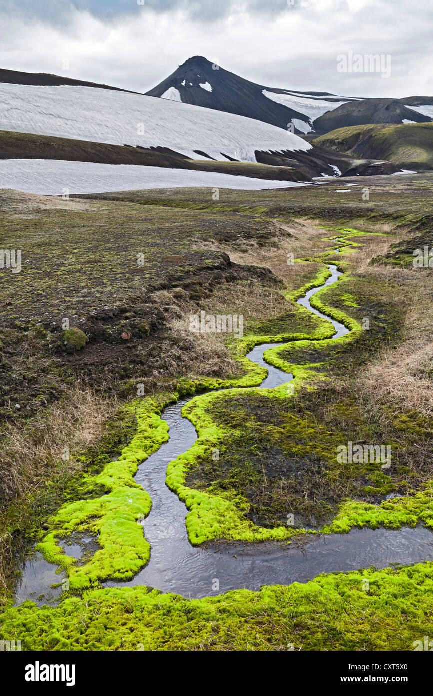 A meandering creek, surrounded by bright green moss, below Krakatindur Mountain, Fjallabak Nature Reserve, Highlands Stock Photo
