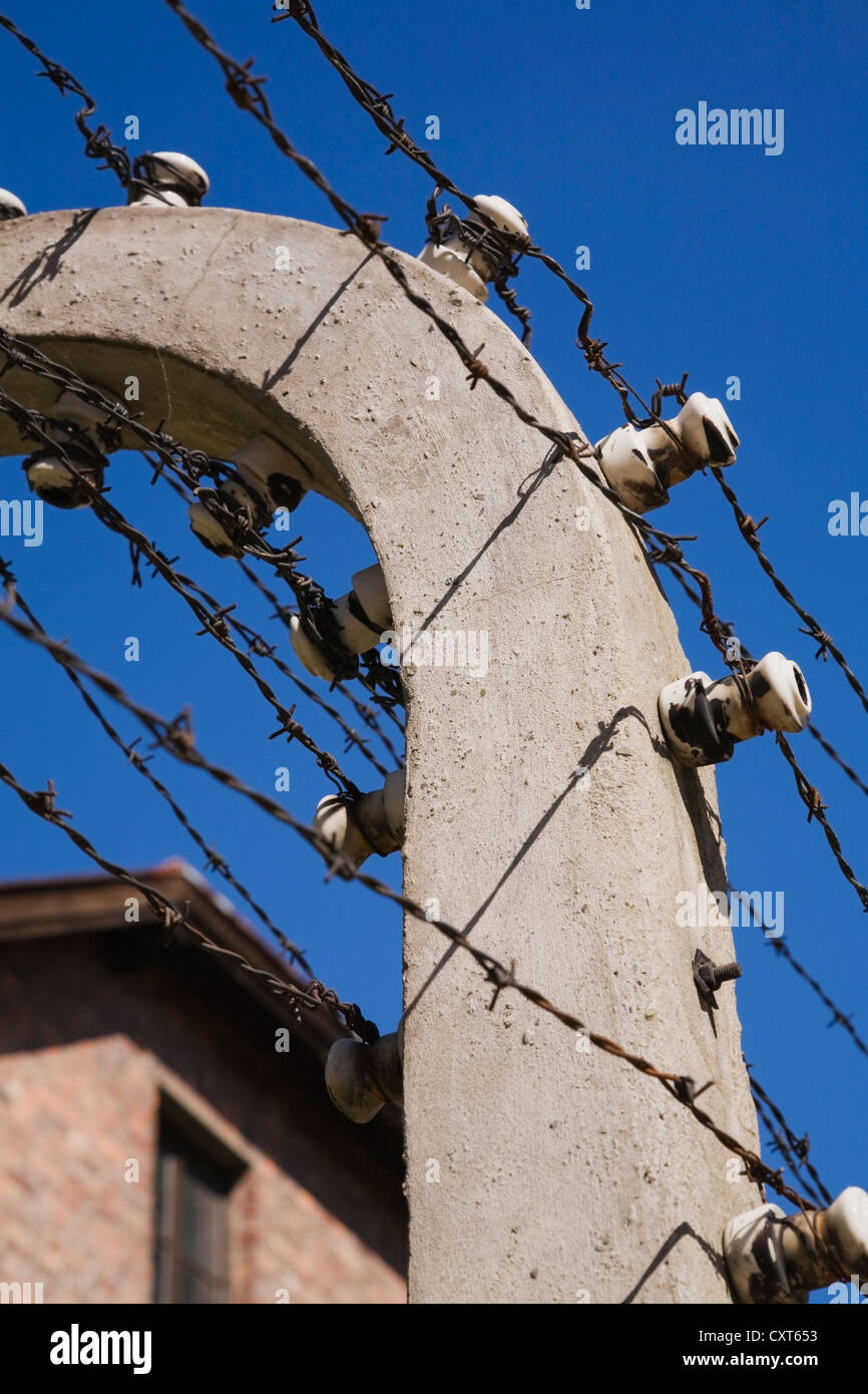 Sensational Barb Wire Fencing Stock Photos Barb Wire Fencing Stock Images Alamy Wiring 101 Vieworaxxcnl