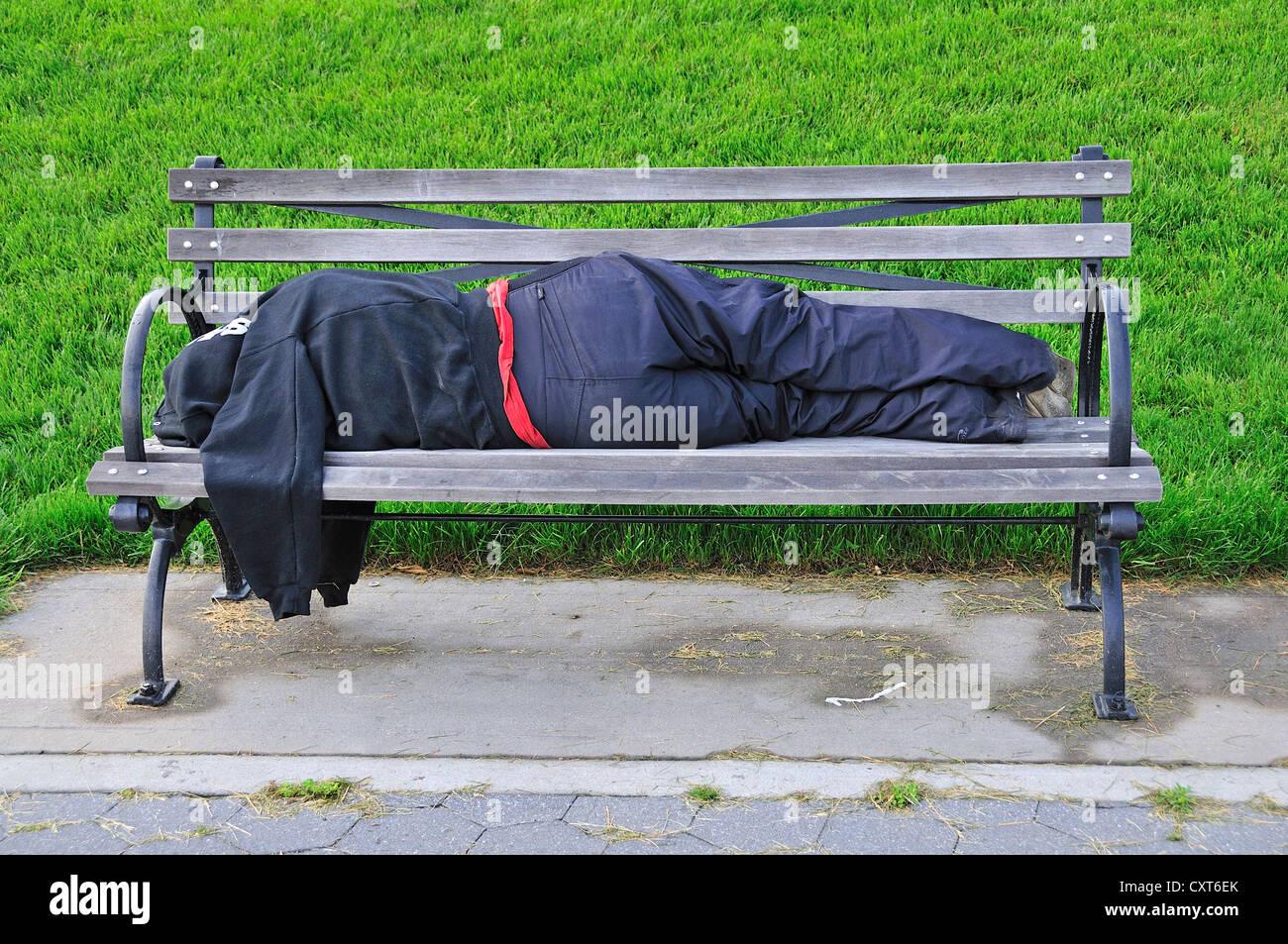 Homeless Woman Asleep On A Park Bench Manhattan New York City Usa