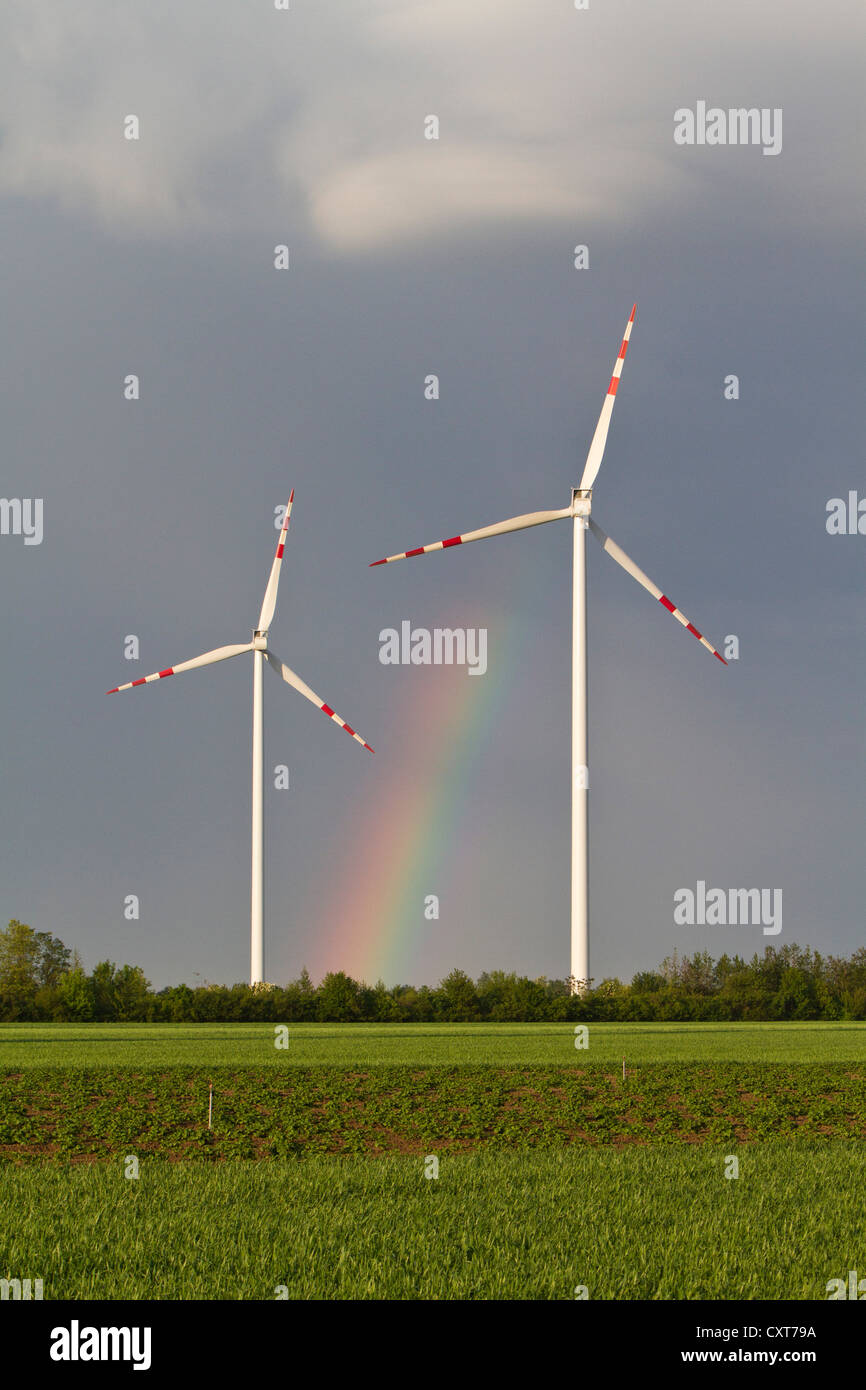 Windpark at the Marchfeld, Lower Austria, Austria - Stock Image