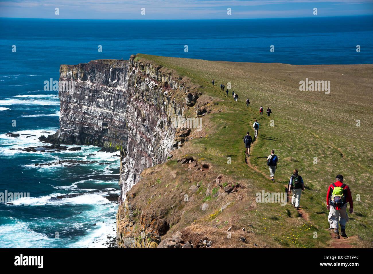 Trekking group on the bird cliffs of Látrabjarg, Westfjords, Iceland, Europe - Stock Image