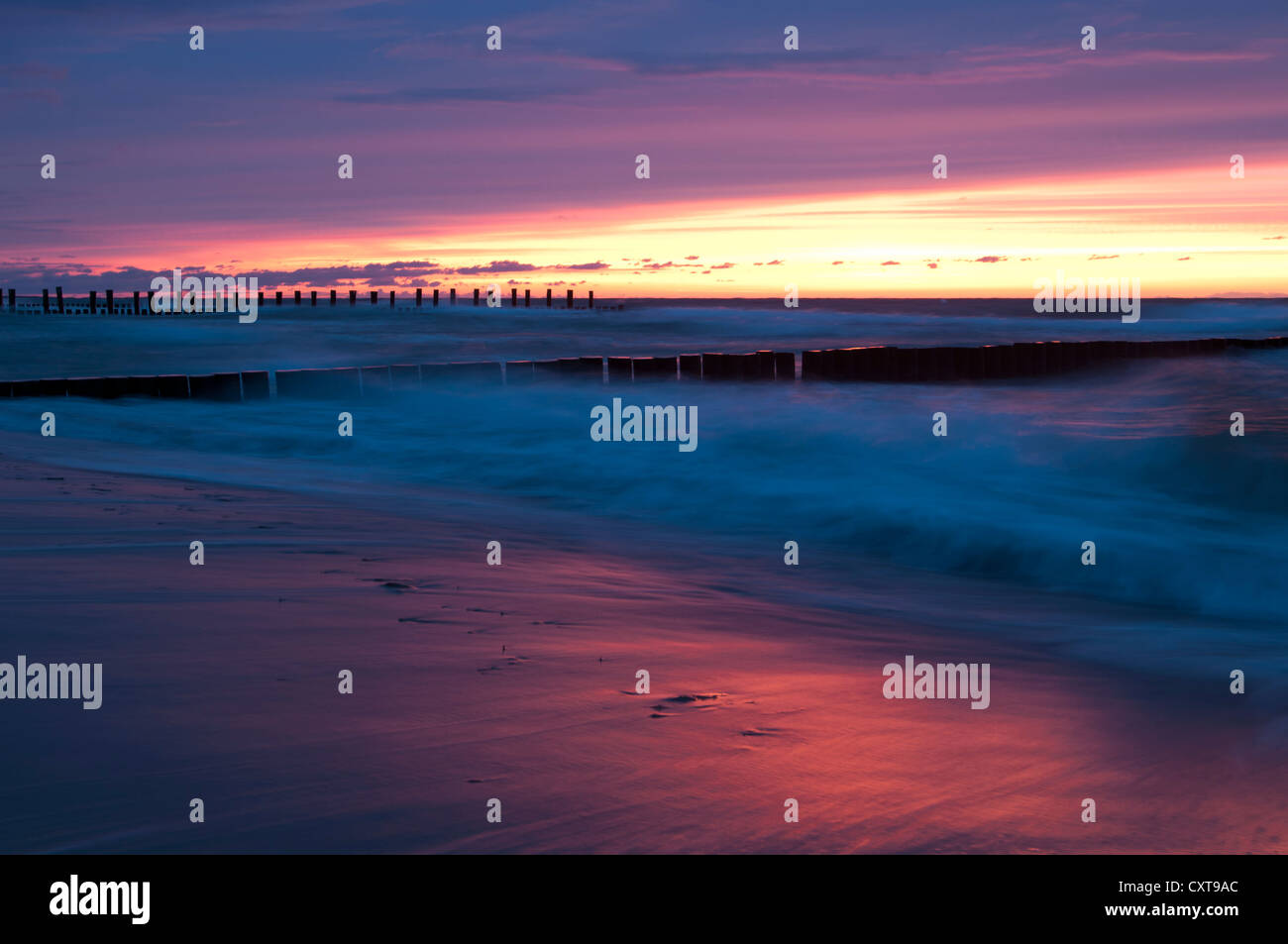Breakwaters in the pink evening light, sea resort of Zingst, Fischland-Darss-Zingst, Baltic Sea, Mecklenburg, Pomerania - Stock Image