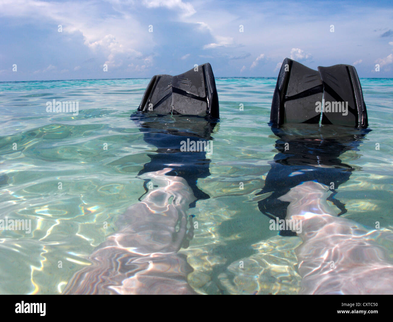 man floating wearing flippers fins dry tortugas florida keys usa - Stock Image