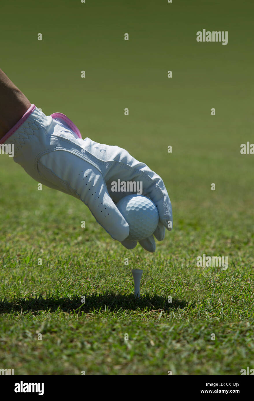 Gloved hand placing golf ball on tee - Stock Image