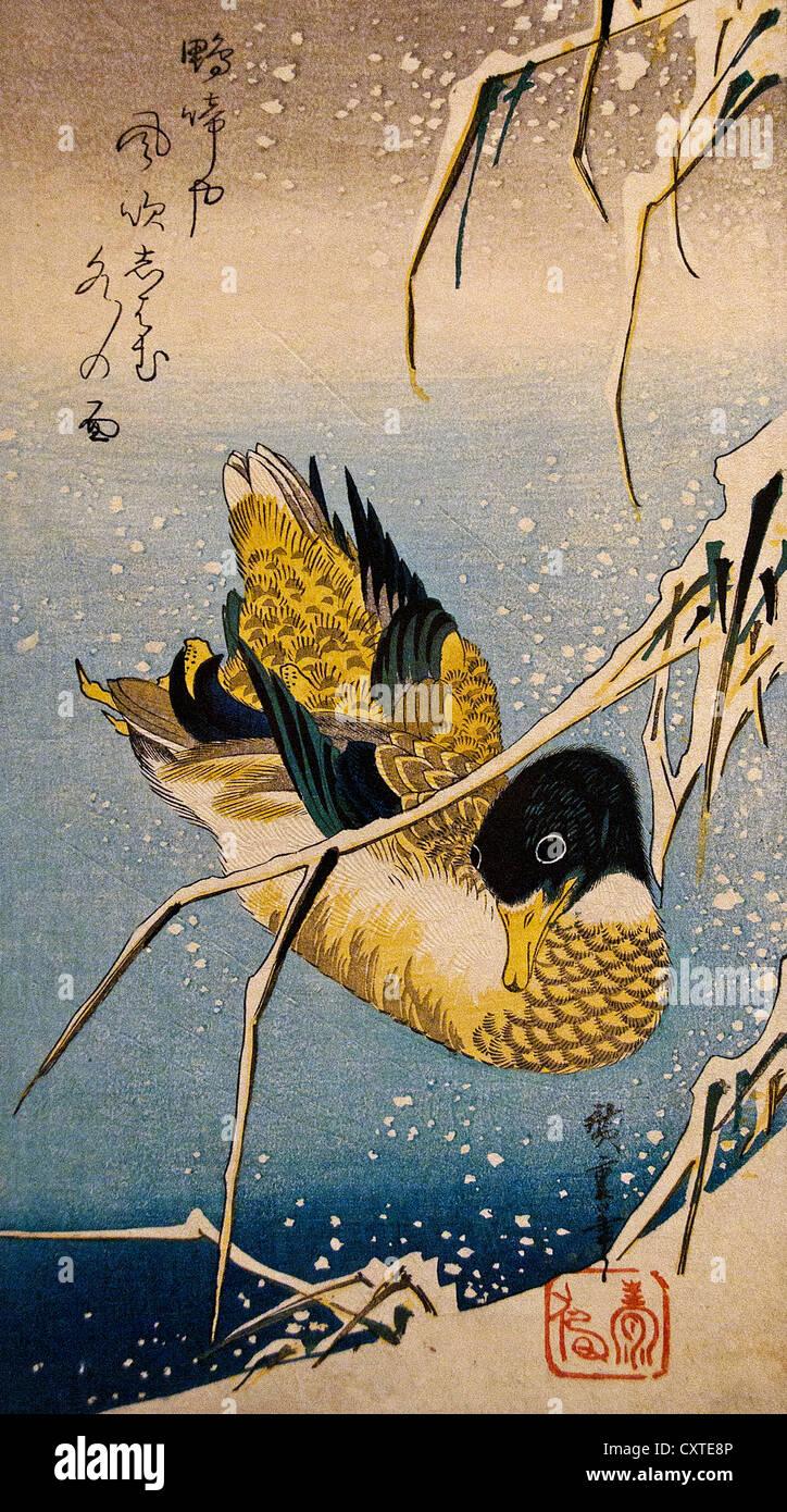 Mallard Duck and Snow-covered Reeds Utagawa Hiroshige Japanese 1797–1858)  Edo period 1832 Japan 38.1 x 17.5 cm - Stock Image