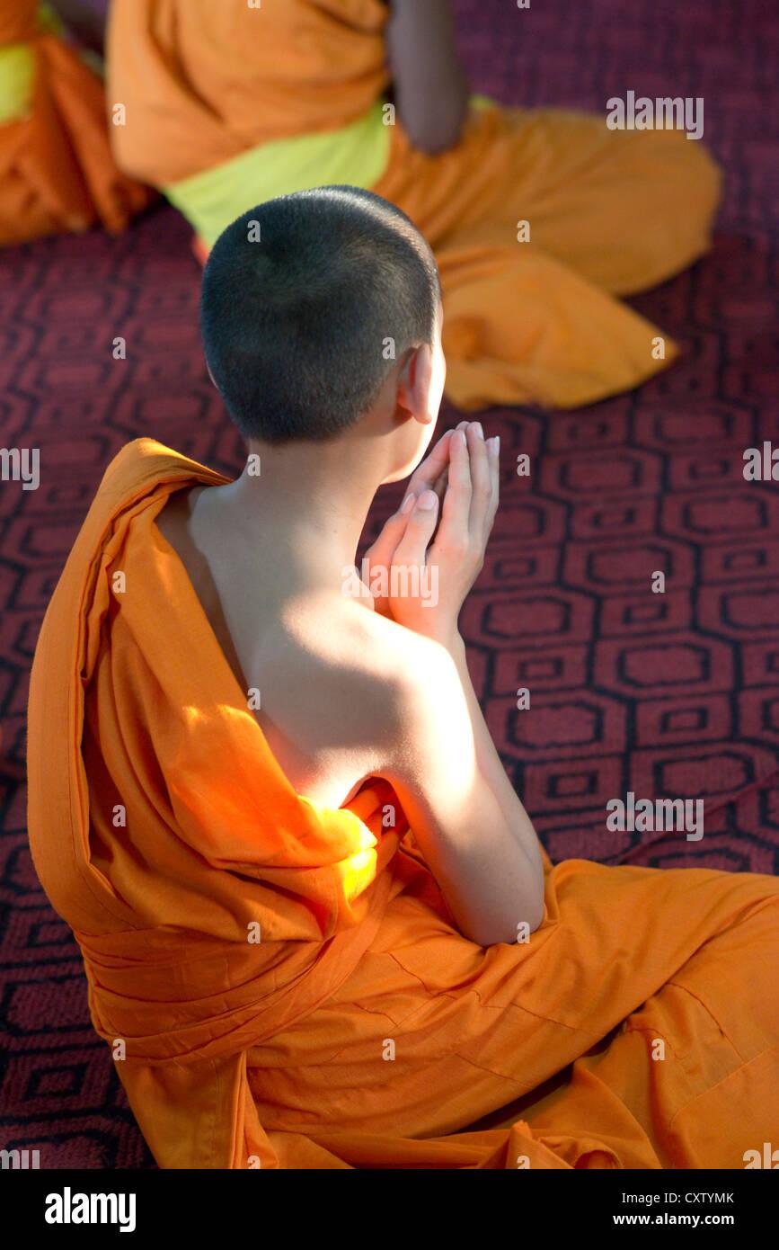 A young monk sits in prayer in the meditation hall of Wat Xieng Thong. Luang Prabang, Laos Stock Photo