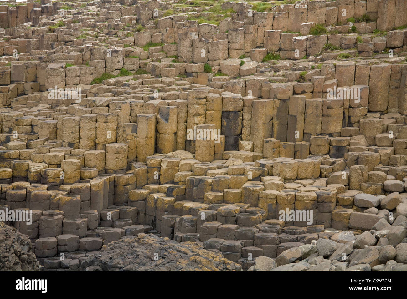 Co Antrim Northern Ireland spectacular Giant's Causeway World heritage Site and National Nature Reserve - Stock Image