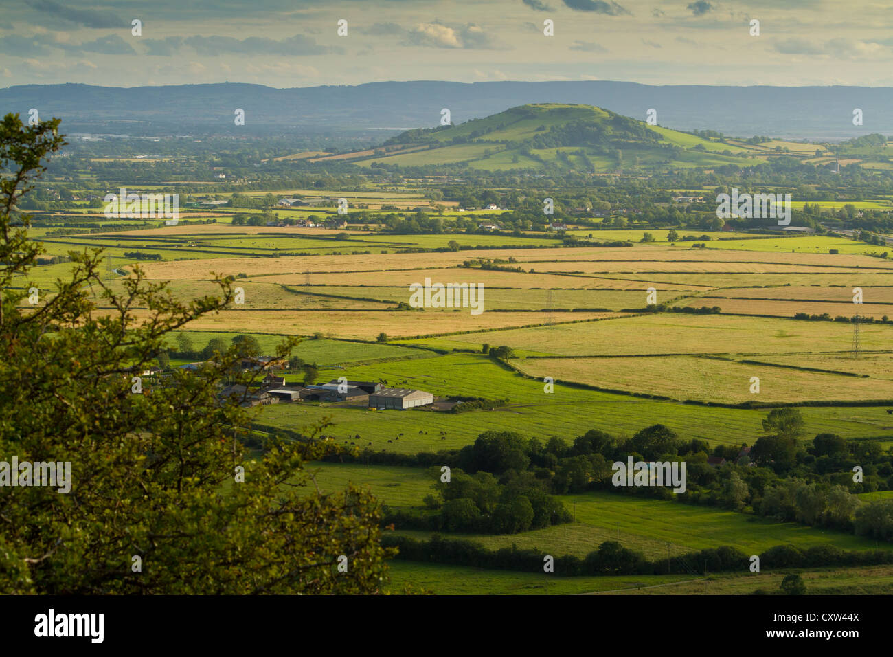 View from Crook Peak towards Brent Knoll in Somerset, part of the Wessex Walk - Stock Image