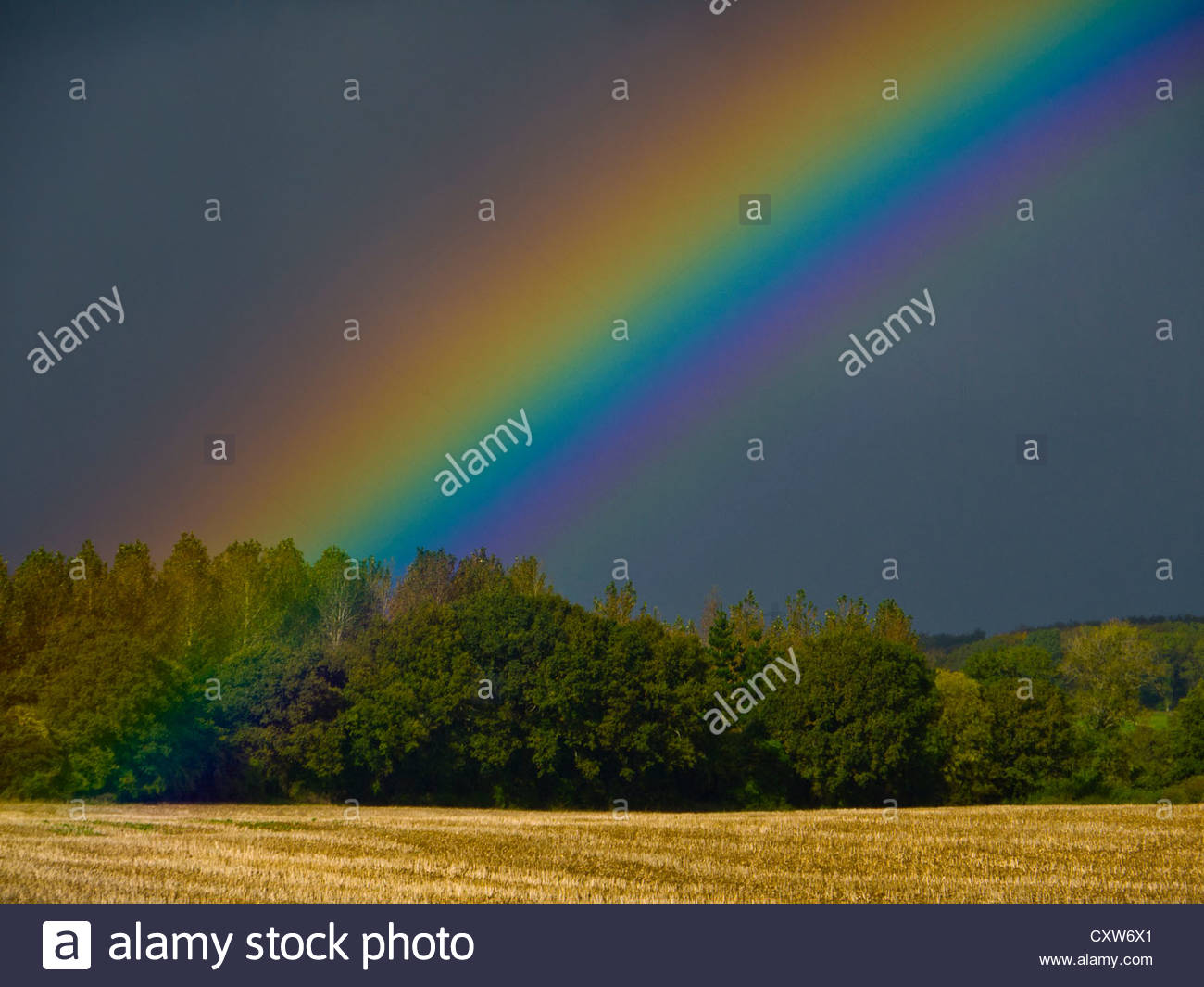 Rainbows End Hampshire England - Stock Image