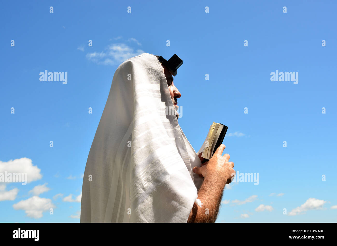 A Jewish man wearing Tallit and Tefillin read from the Torah book pray to God under a blue sky with sheep clouds. - Stock Image