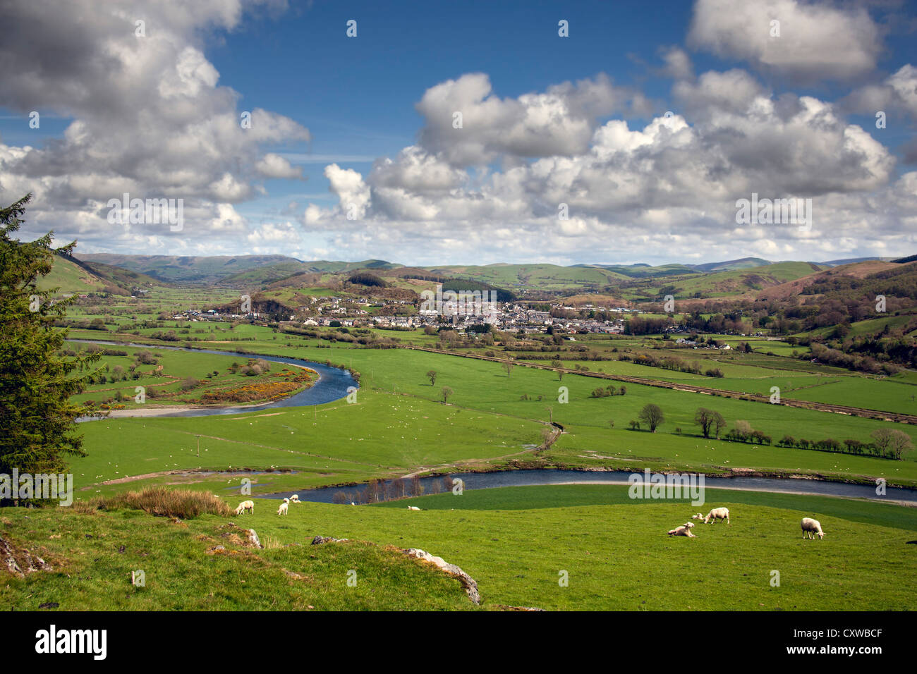 A view of machynlleth, powys, west of the town from the top of a 100 metre hill showing the river dovey and surrounding - Stock Image