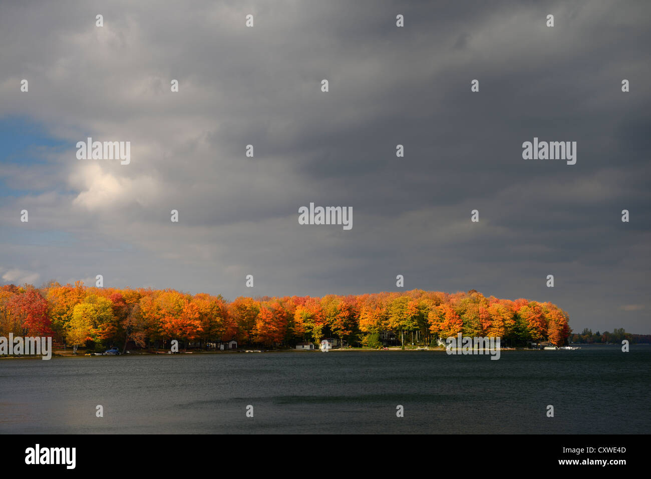 Cottages on Lake Eugenia Ontario Canada with bright red sidelit maple trees and storm clouds - Stock Image