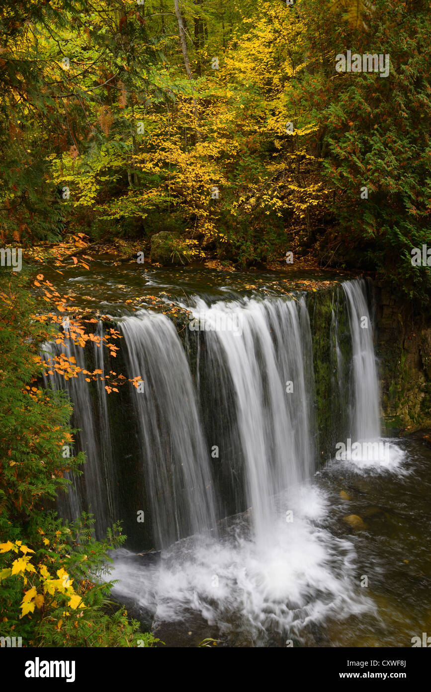 Hoggs Falls on the Boyne River in Grey County Ontario part of the Niagara escarpment with yellow Fall color - Stock Image