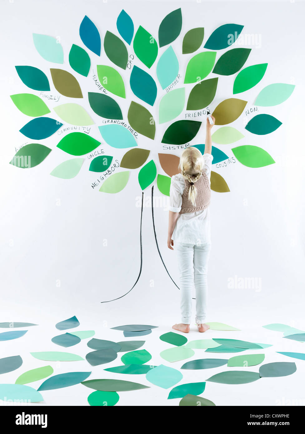 Girl painting tree on wall - Stock Image