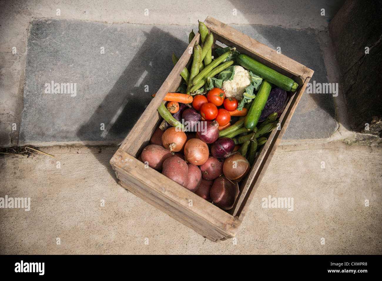 Wooden crate of vegetables - Stock Image