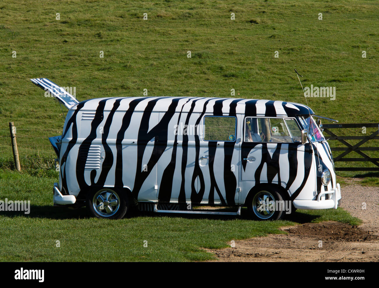 VW Camper Van with Zebra-Striped Paintwork - Stock Image