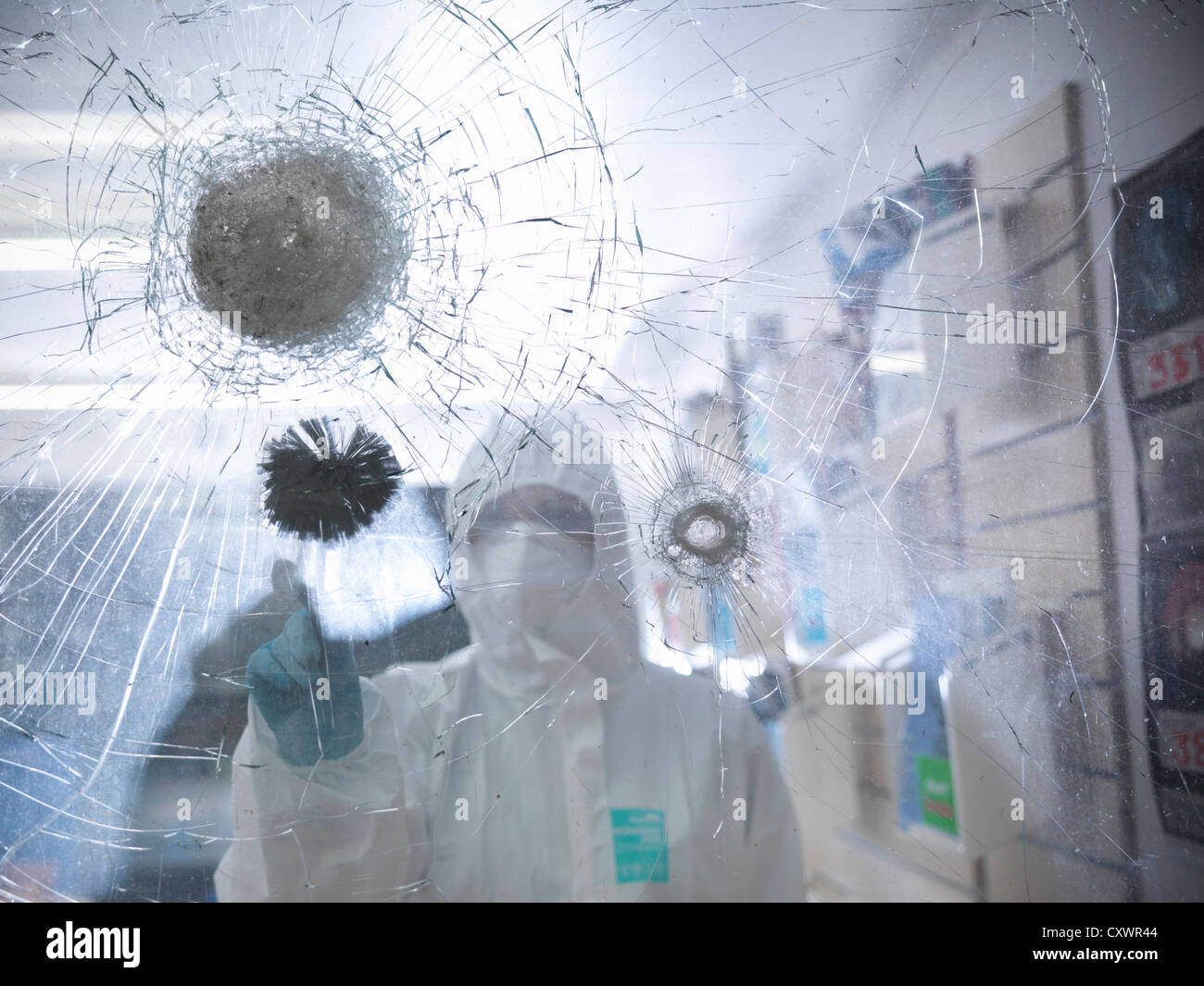 Forensic scientist at shattered window - Stock Image