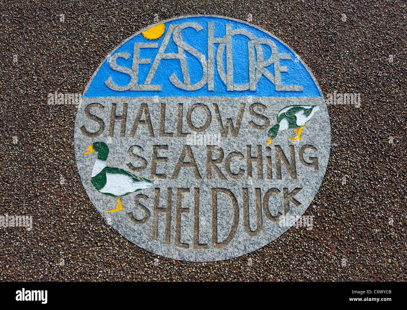 'SEASHORE SHALLOWS SEARCHING SHELDUCK'. The Tern Project, The Stone Jetty, Morecambe, Lancashire, England, - Stock Image