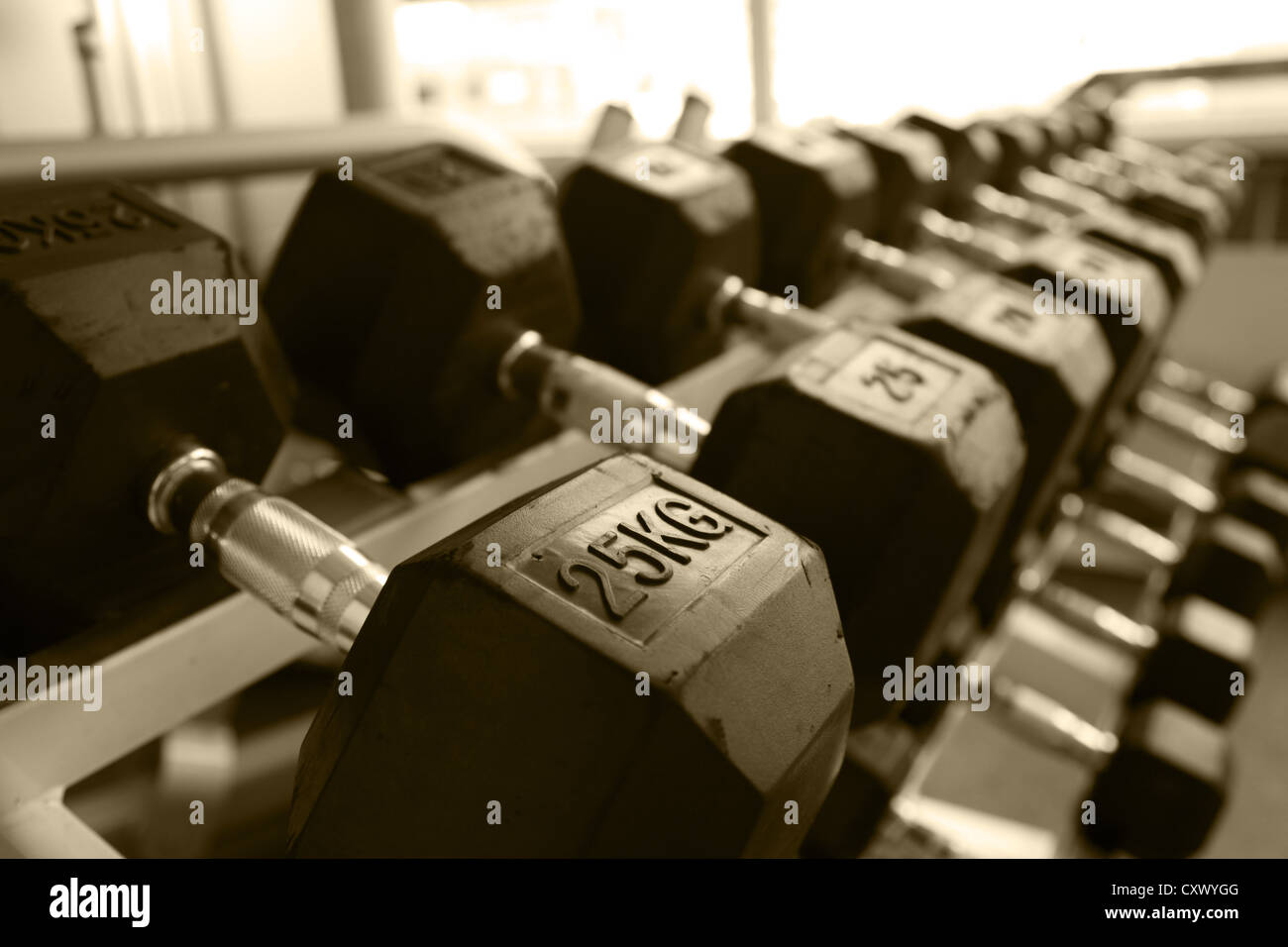 dumbbell weights exercise gym workout equipment - Stock Image