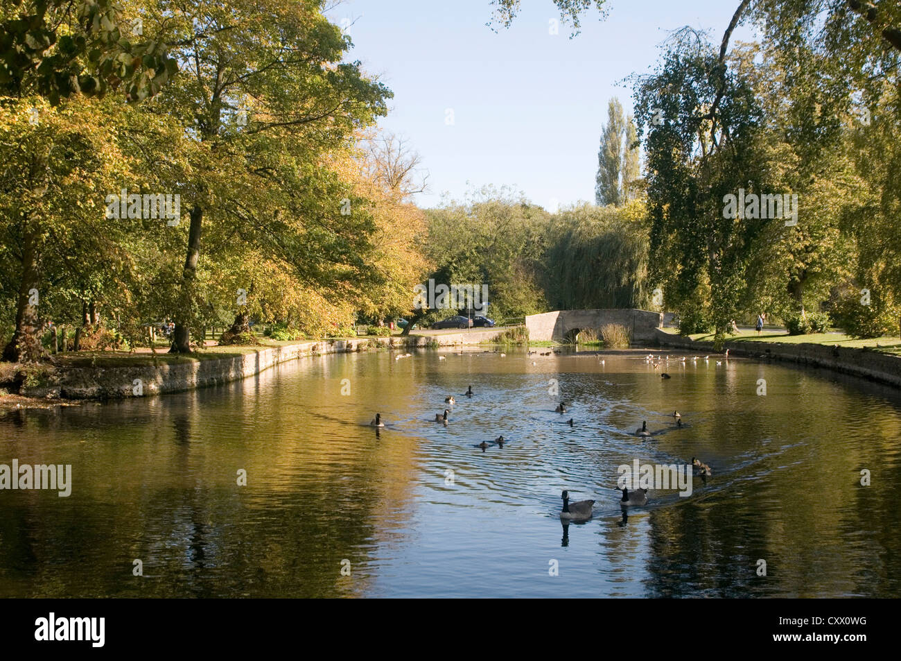 thetford suffolk Little Ouse River uk - Stock Image