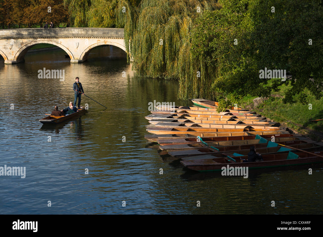A sole punter on river Cam, Cambridge. England, UK. - Stock Image