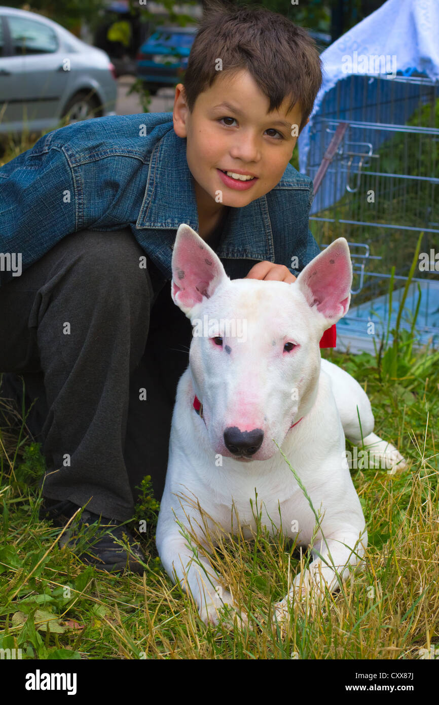white Bull Terrier Dog and boy on the green grass in the summer lawn - Stock Image