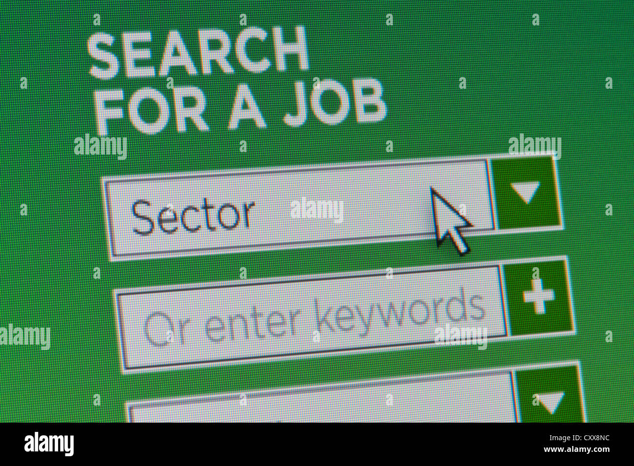 Close up of a fictional website inviting users to search for a job after providing details - Stock Image