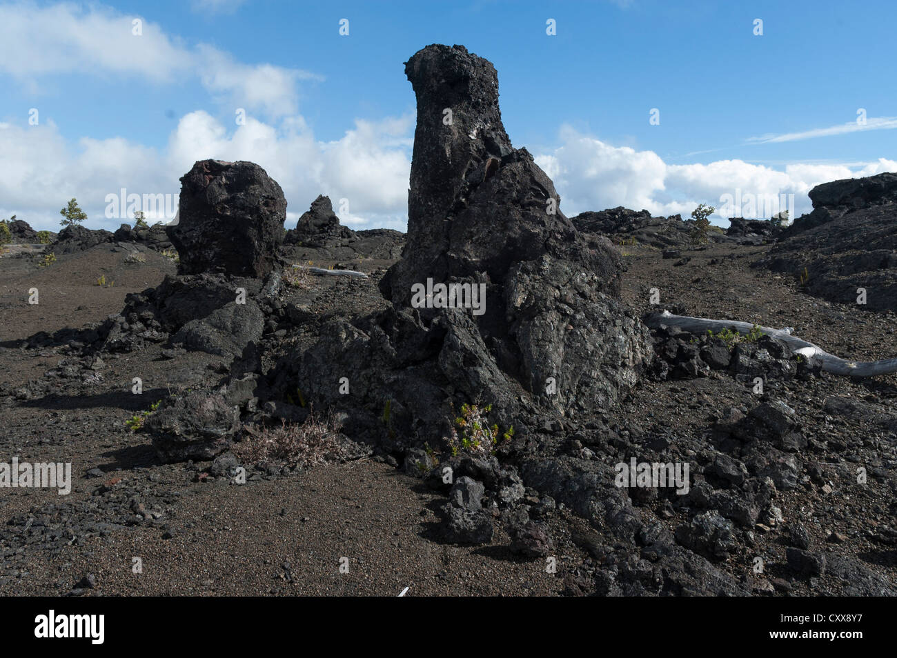 Elk284-2554 Hawaii, Volcanoes NP, lava field - Stock Image