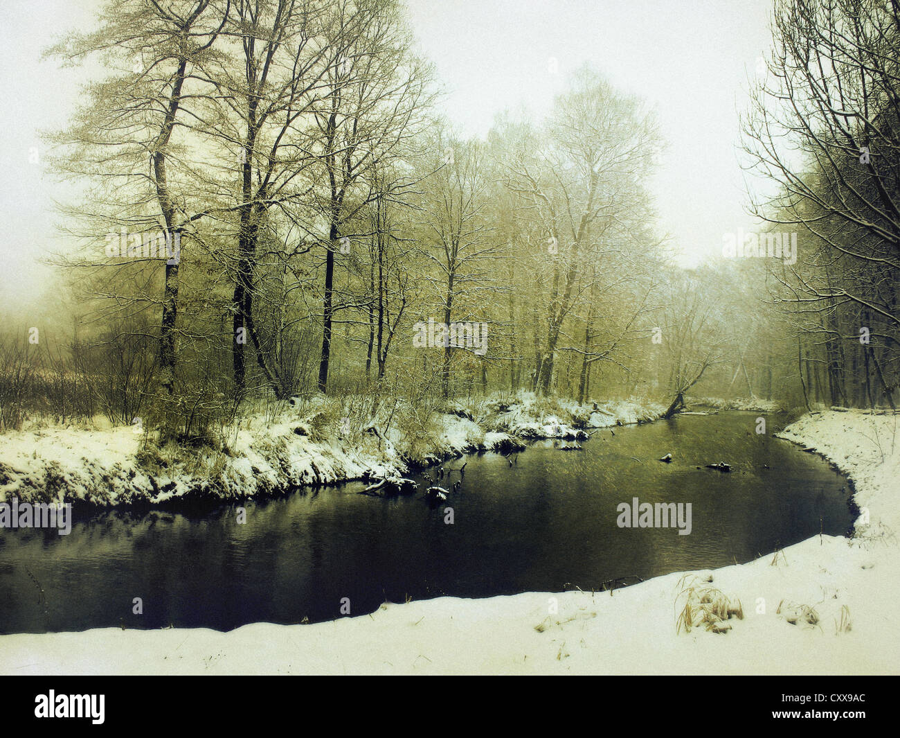 A landscape with a river bank in the front, and woods in the background, all covered with snow in a warm tonal palette. - Stock Image