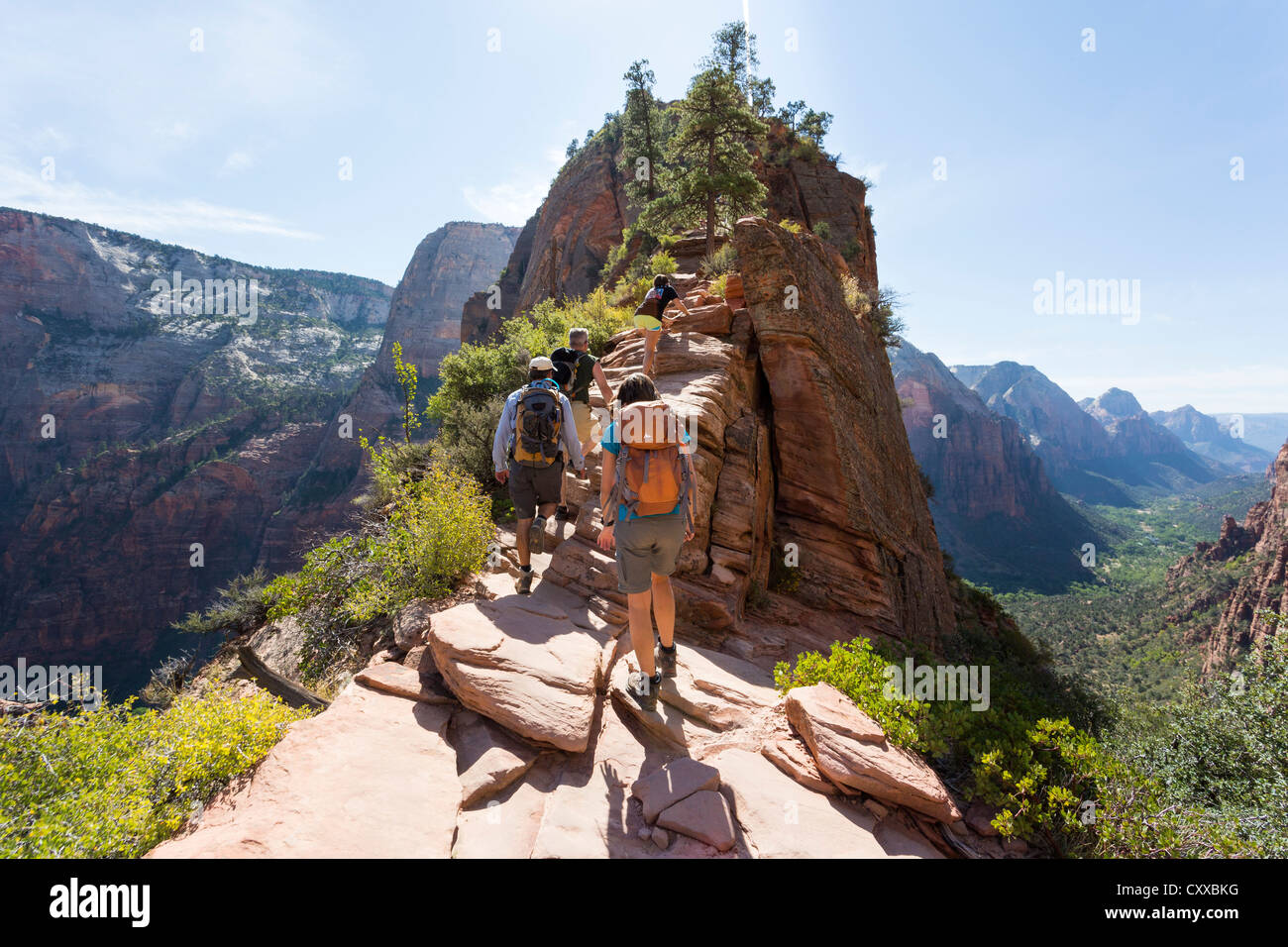 People hiking a strenuous Angel's Landing trail at Zion National Park - beautiful scenic views - Stock Image