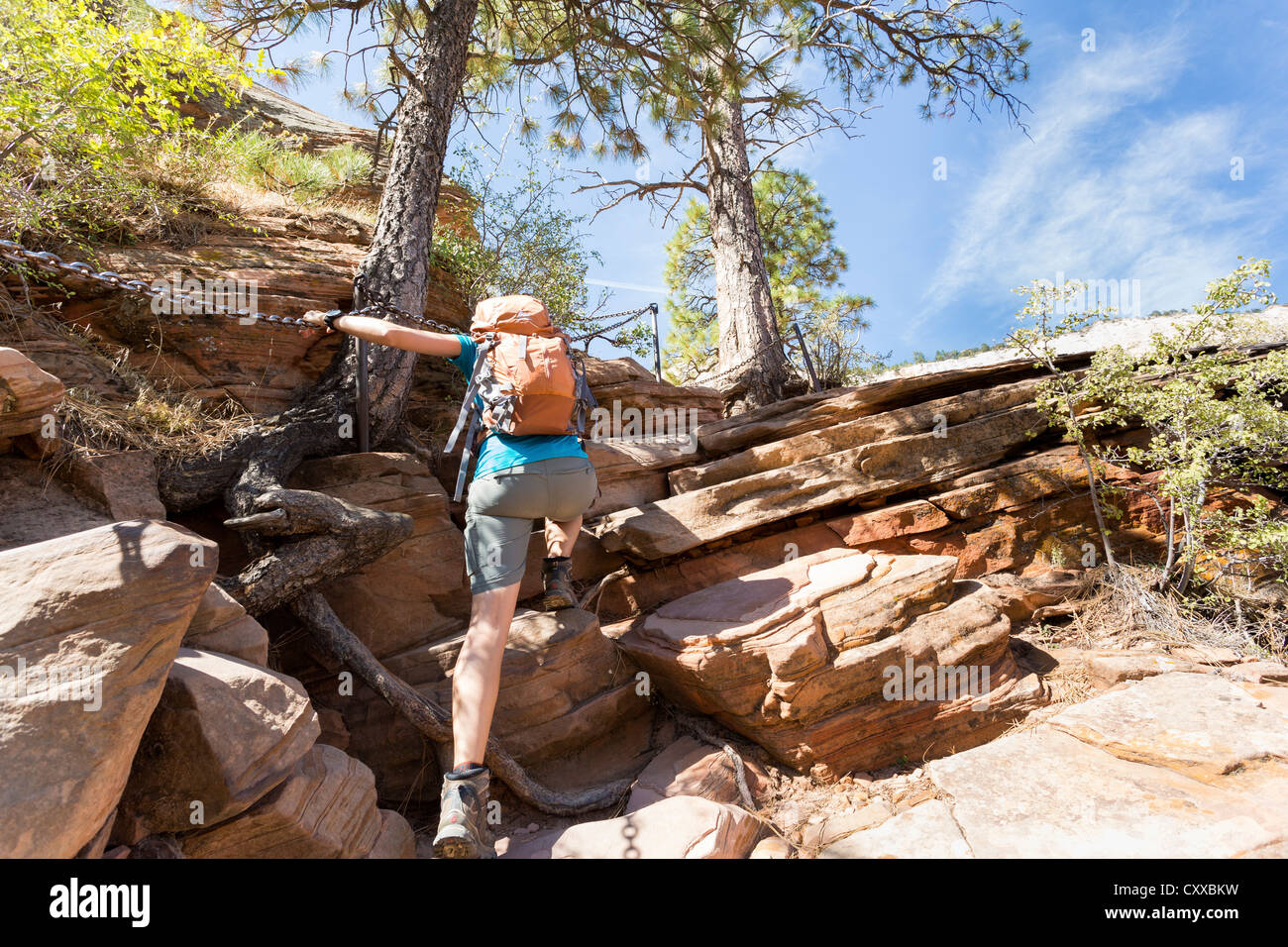Young woman hiking a strenuous Angel's Landing trail at Zion National Park - beautiful scenic views - Stock Image