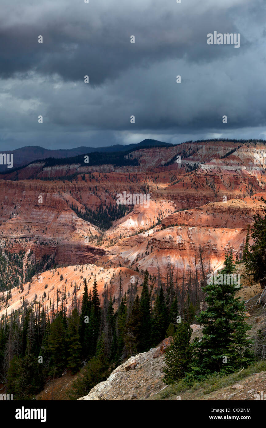 A thunderstorm forms over the ampitheater at Cedar Breaks National Monument - Stock Image