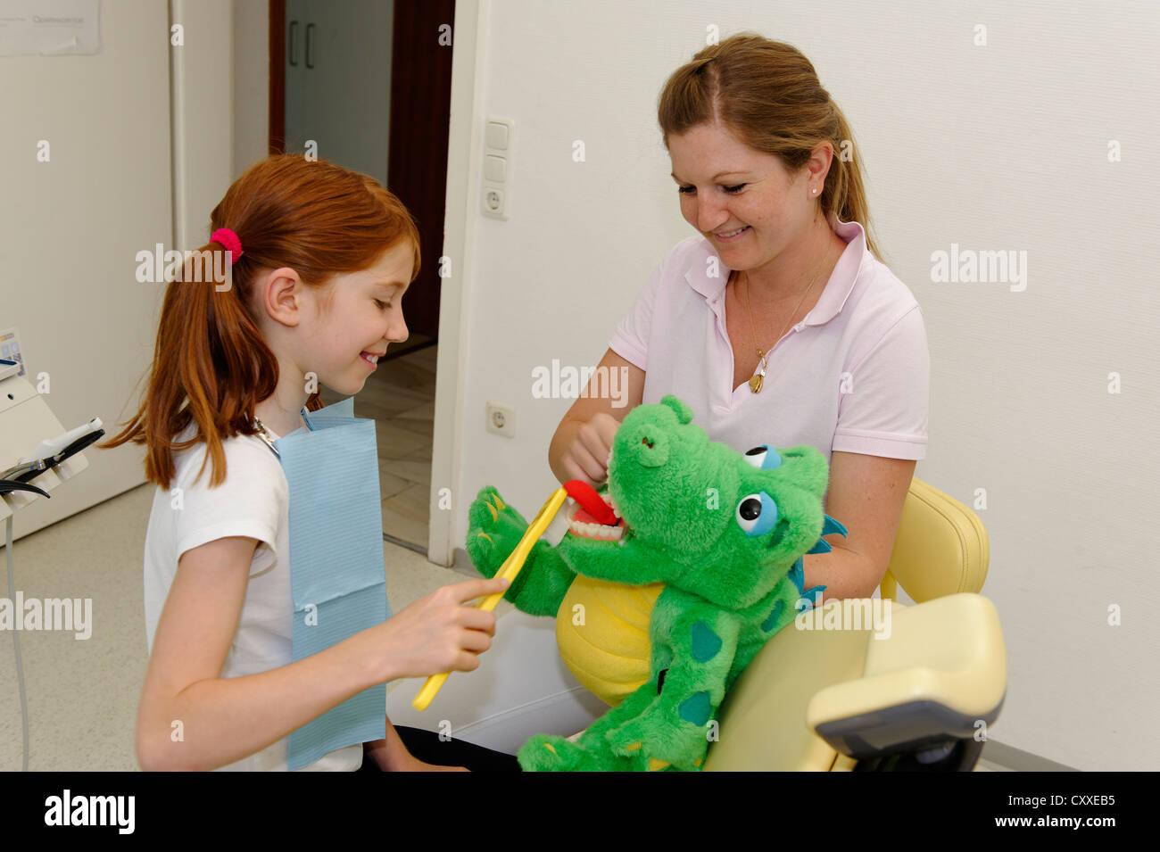 Girl at the dentist's, receiving instructions for dental care on a model, dental hygiene, dental care, dental - Stock Image