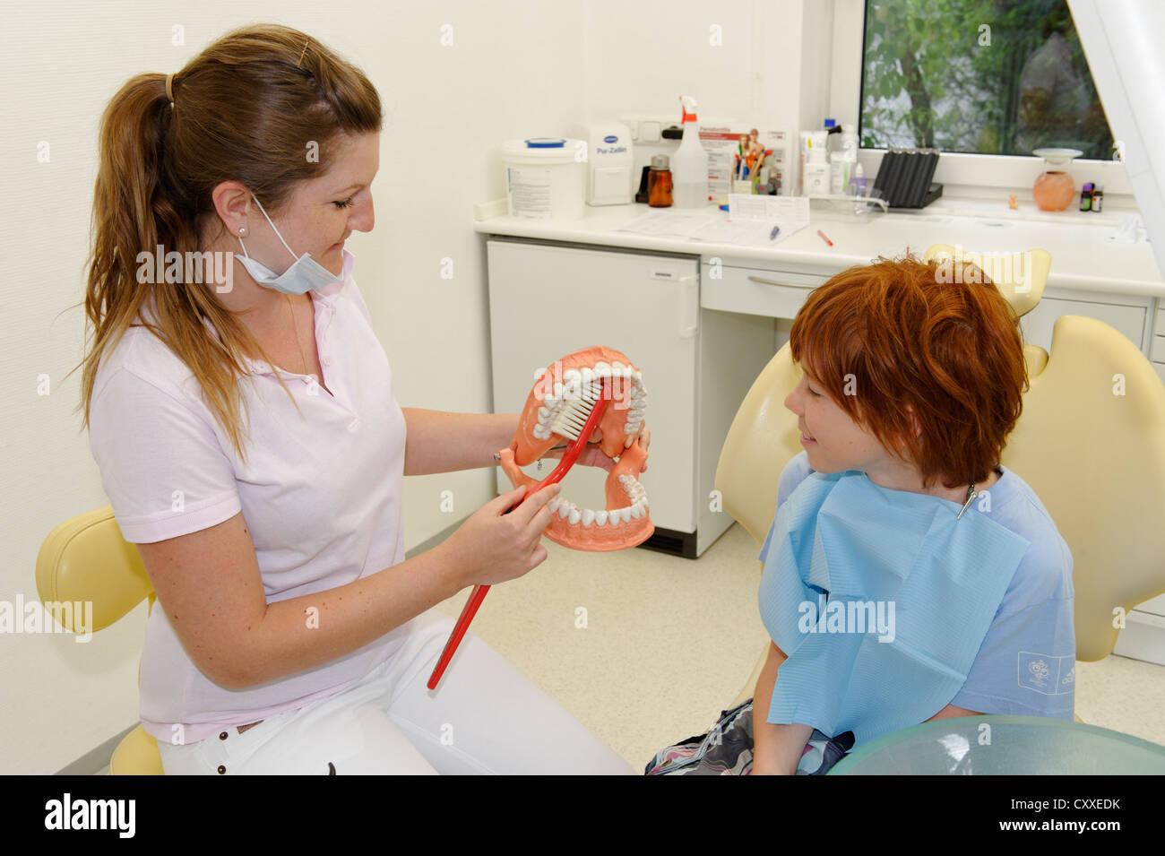 Boy at the dentist's, receiving instructions for dental care on a model, dental hygiene, dental care, dental - Stock Image