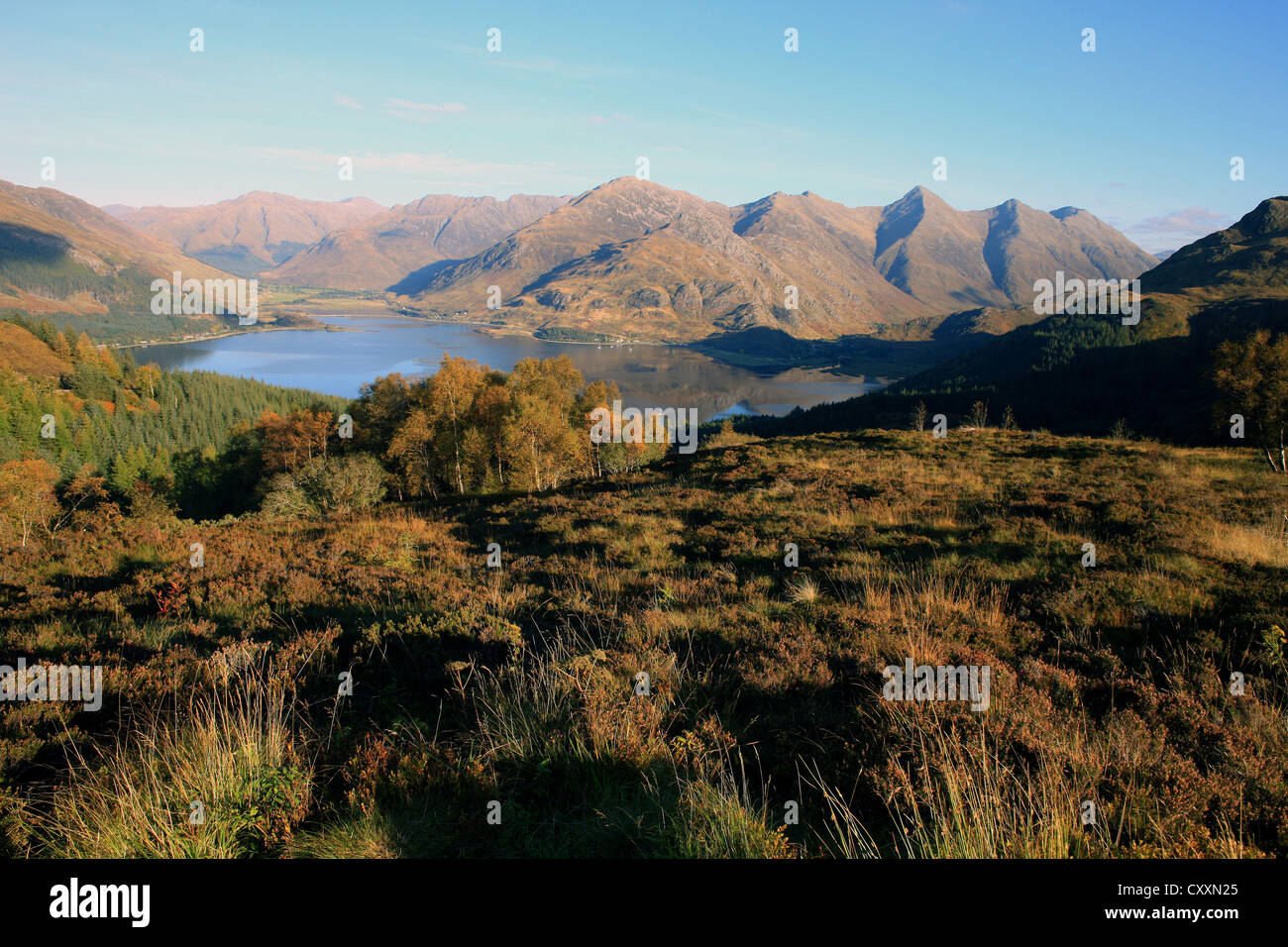 The Five Sisters of Kintail and Loch Duich in the Scottish Highlands. Autumn colours of trees and heather - Stock Image