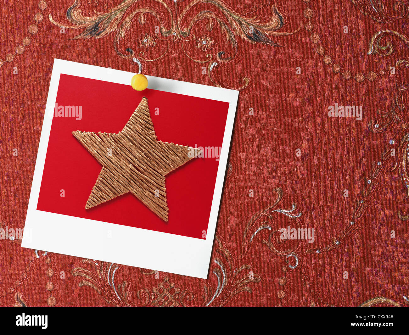 Polaroid photo of a Christmas star pinned on red Baroque wallpaper - Stock Image