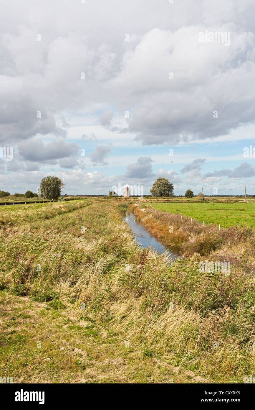 Norfolk West Somerton drainage windmill - Stock Image
