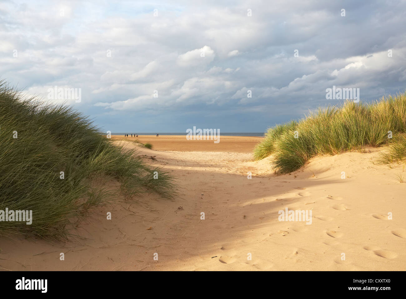 North Norfolk Holkham beach sand dunes marram grass and sea - Stock Image