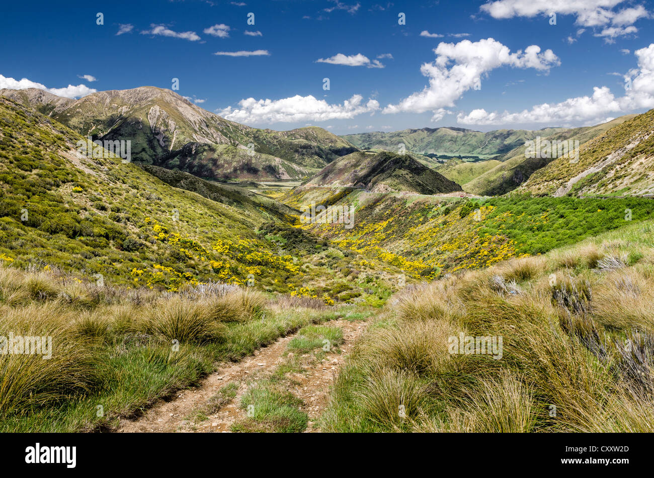 Path across the hills, Craigieburn Range, Porters Pass, Canterbury, South Island, New Zealand, Oceania - Stock Image