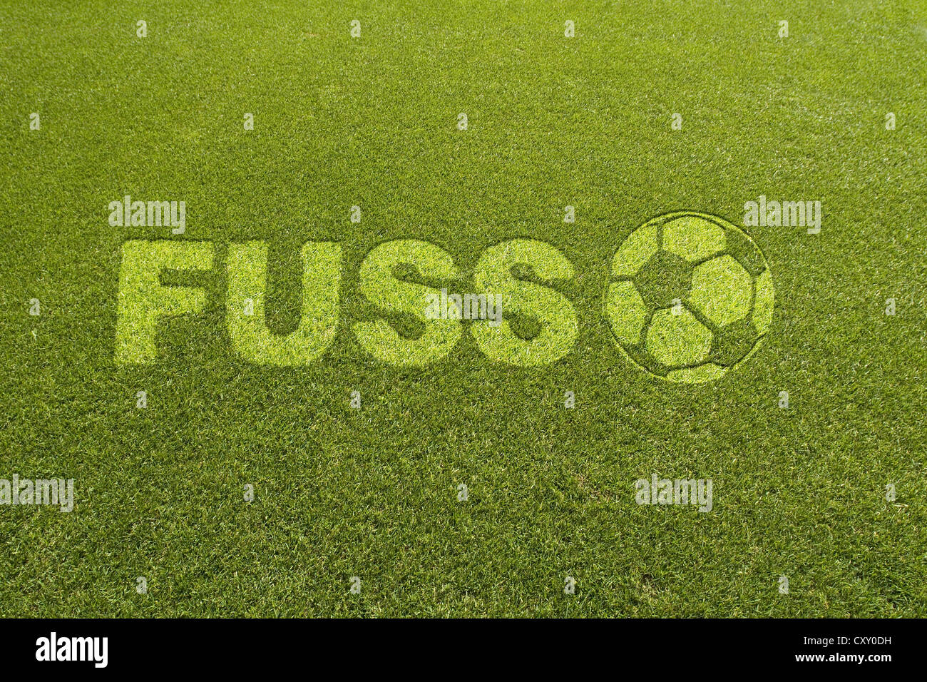 Grass with the lettering FUSS, German for foot, beside a football pattern, composing - Stock Image