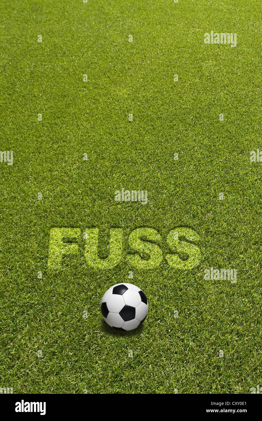 Football on grass below the lettering FUSS, German for foot, composing - Stock Image