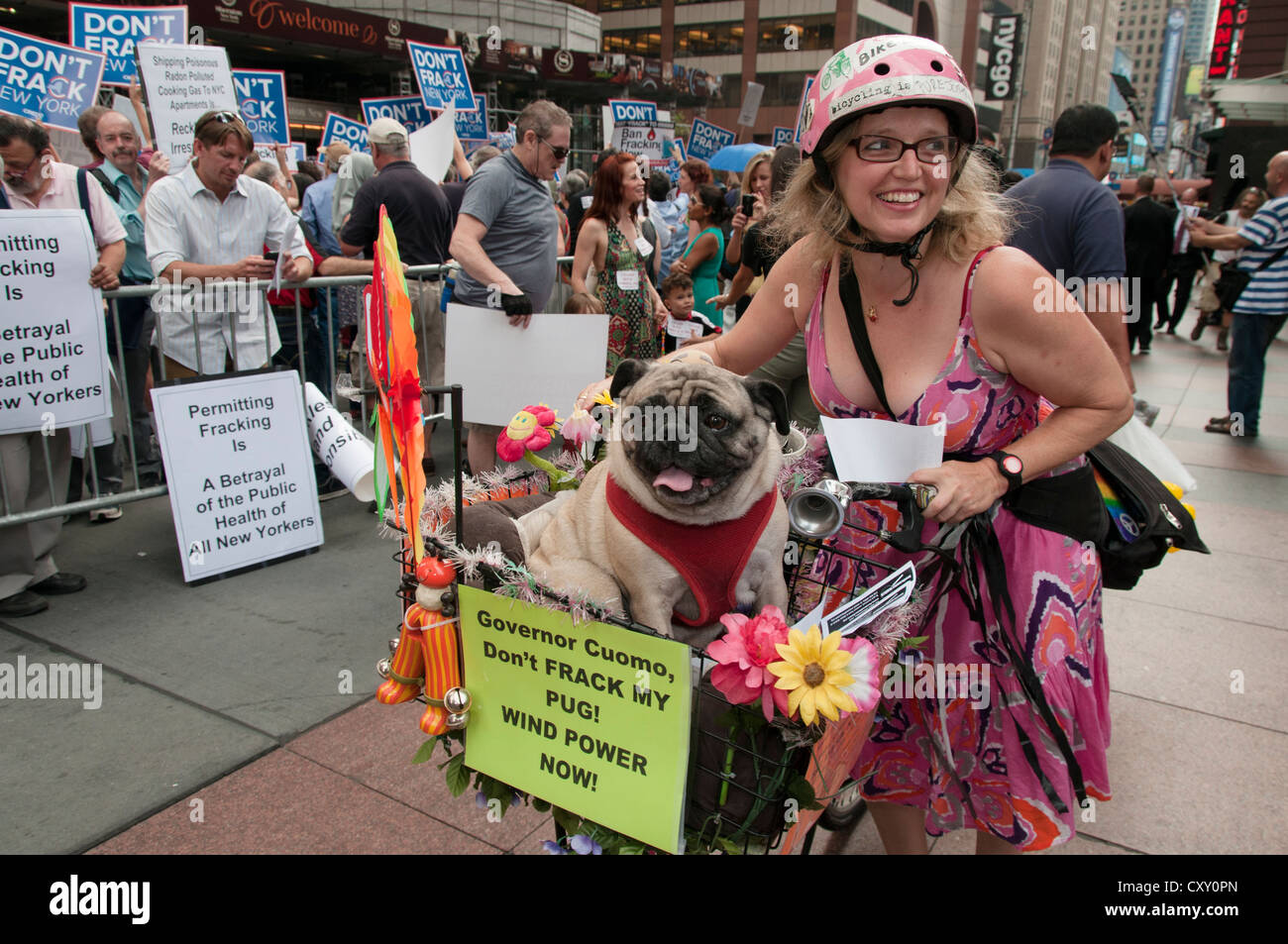 An activist with Pug dog in a Manhattan protest against fracking for natural gas in New York outside NY Governor - Stock Image