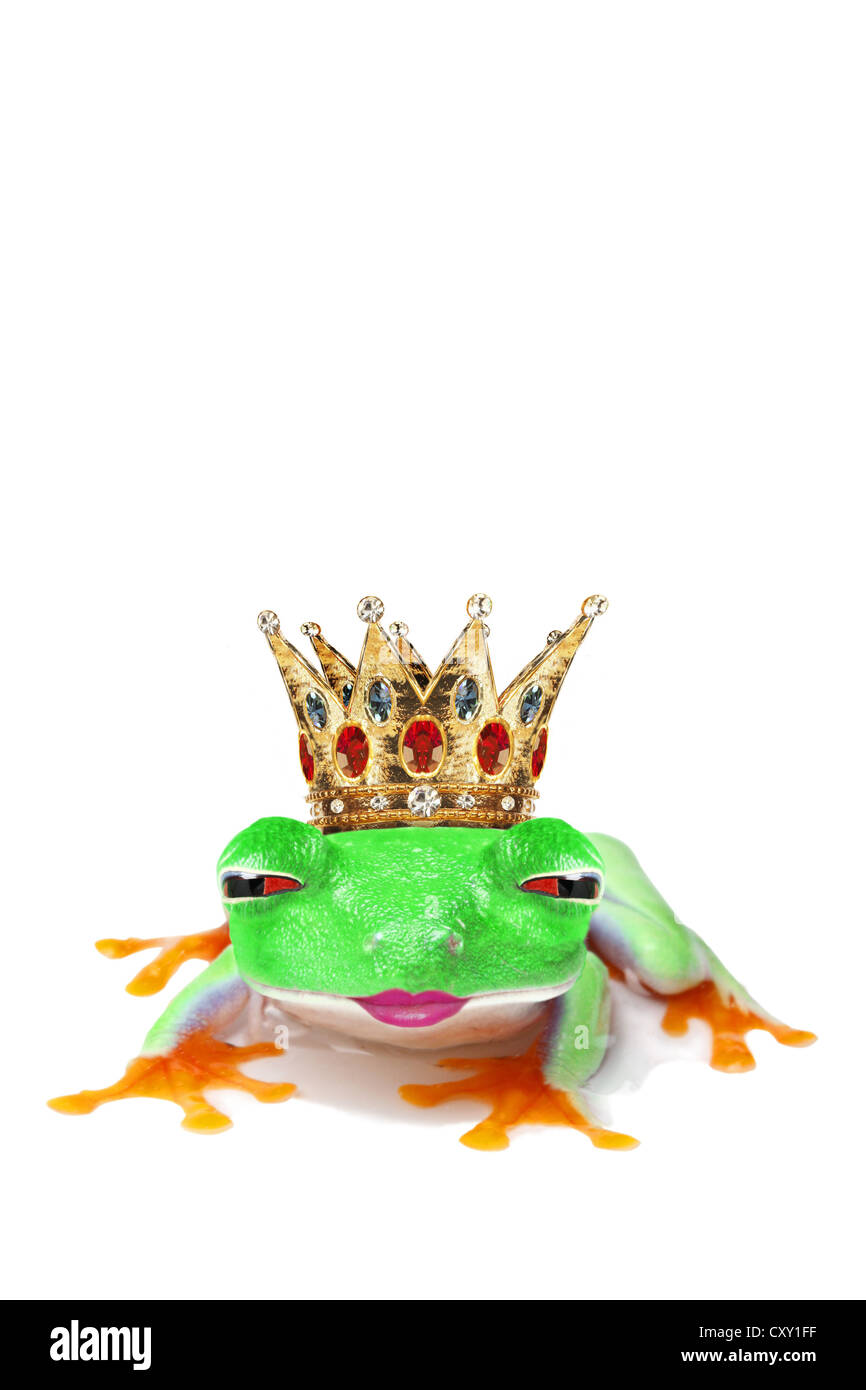 Frog wearing a crown winking and puckering-up for a kiss Stock Photo
