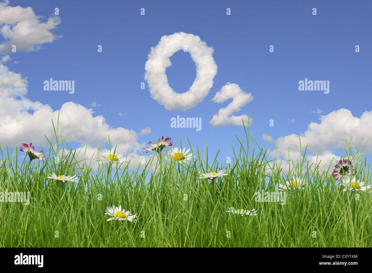 Field of flowers, clouds forming the letters 'O2', illustration - Stock Image