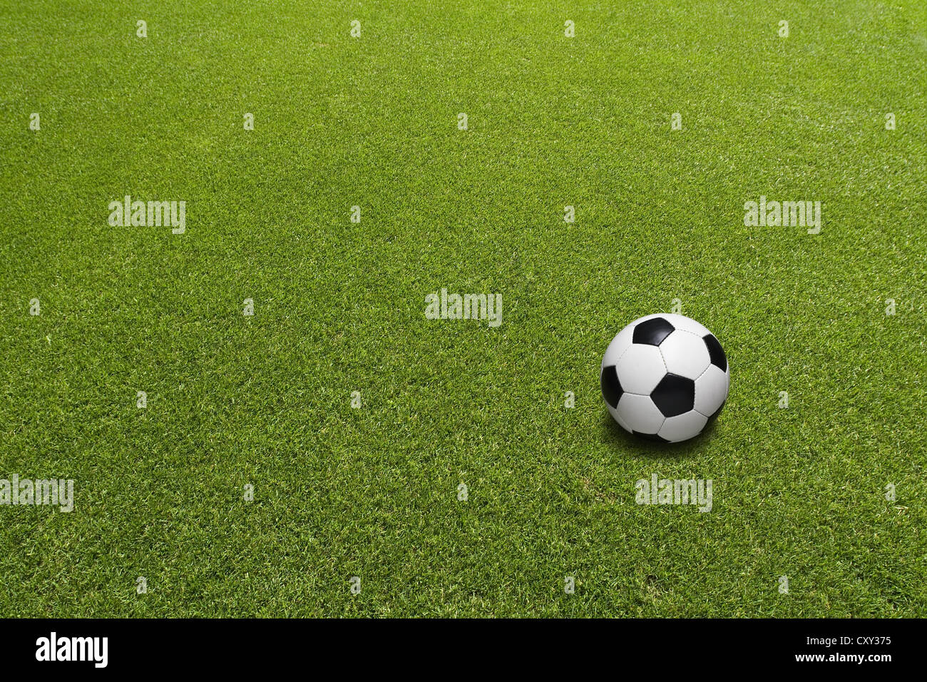 Lawn with a football - Stock Image