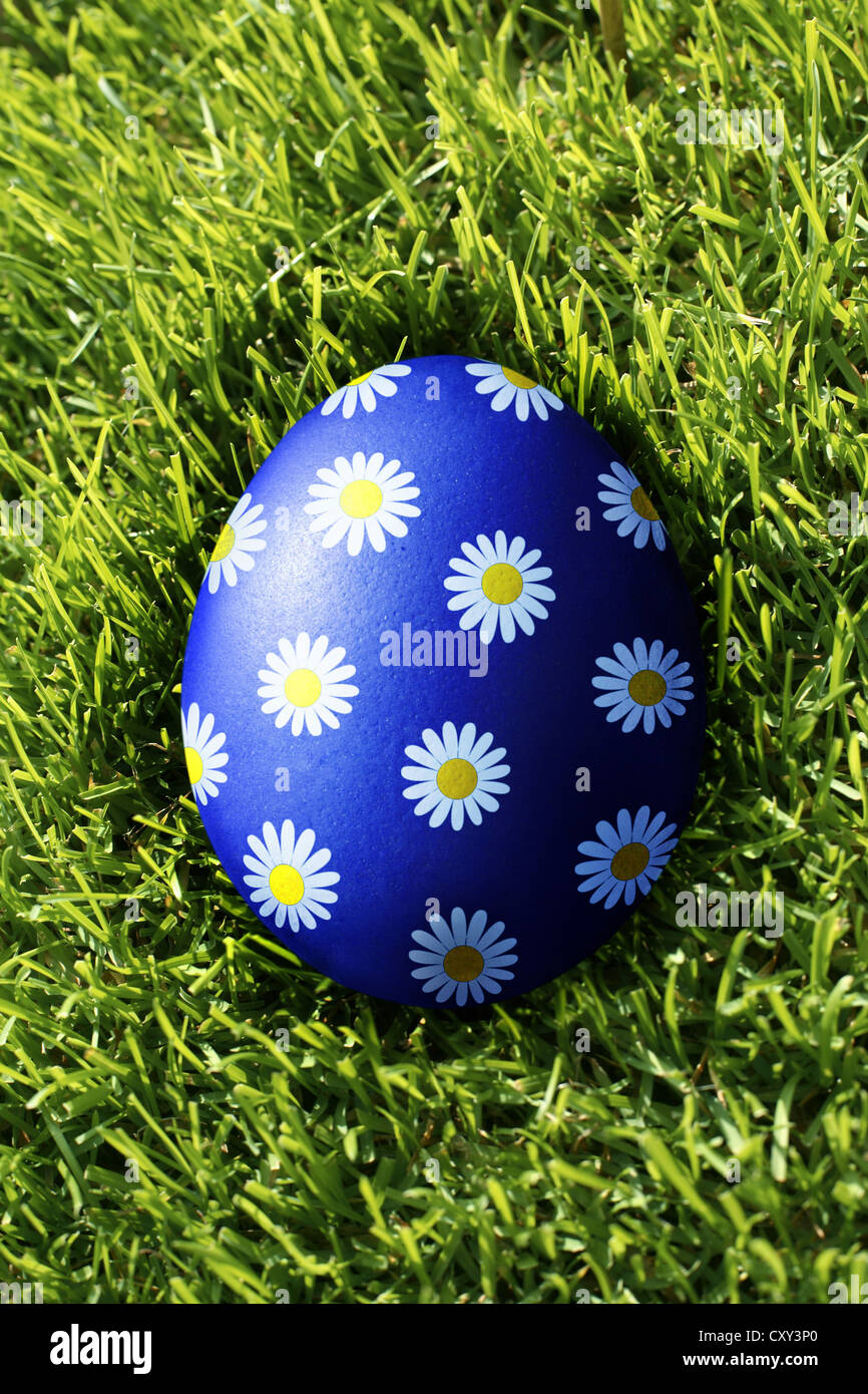 Floral motif painted on an egg on grass - Stock Image