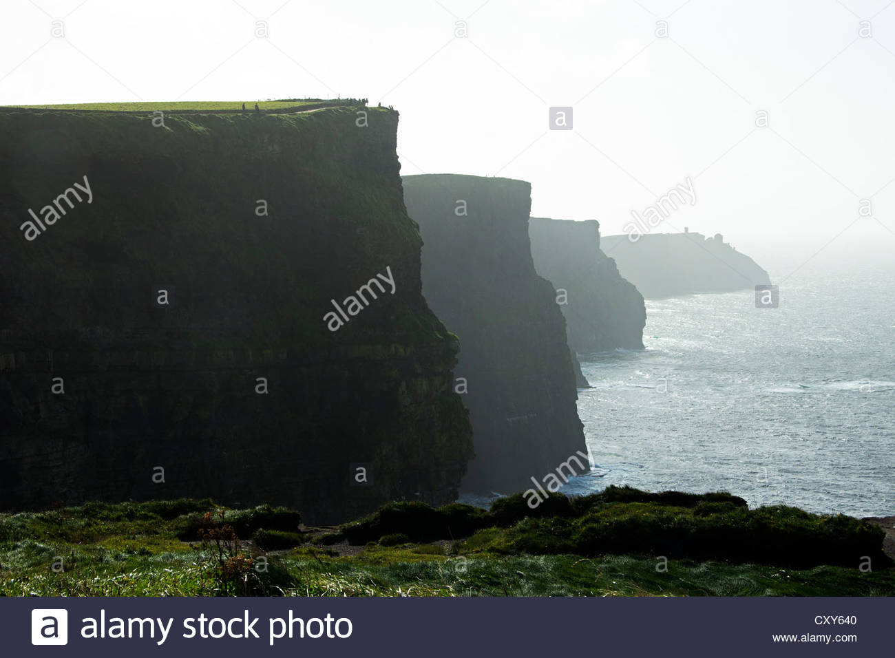 Cliffs of Moher, Co. Clare, Ireland - Stock Image