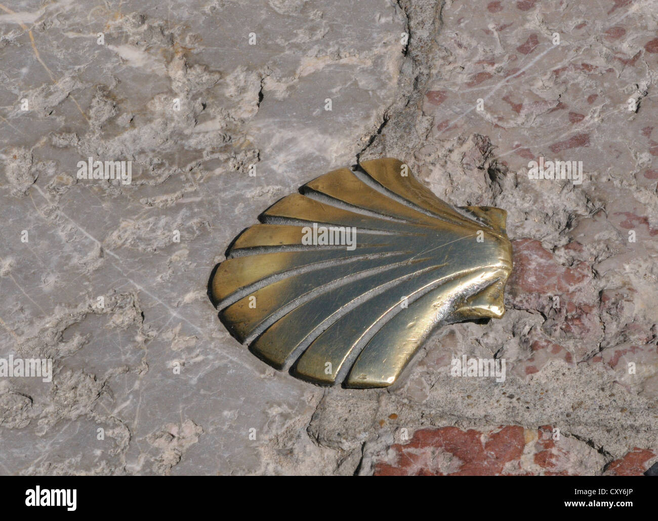 Metal Scallop Shell Symbol Set In The Pavement Marking The Pilgrims