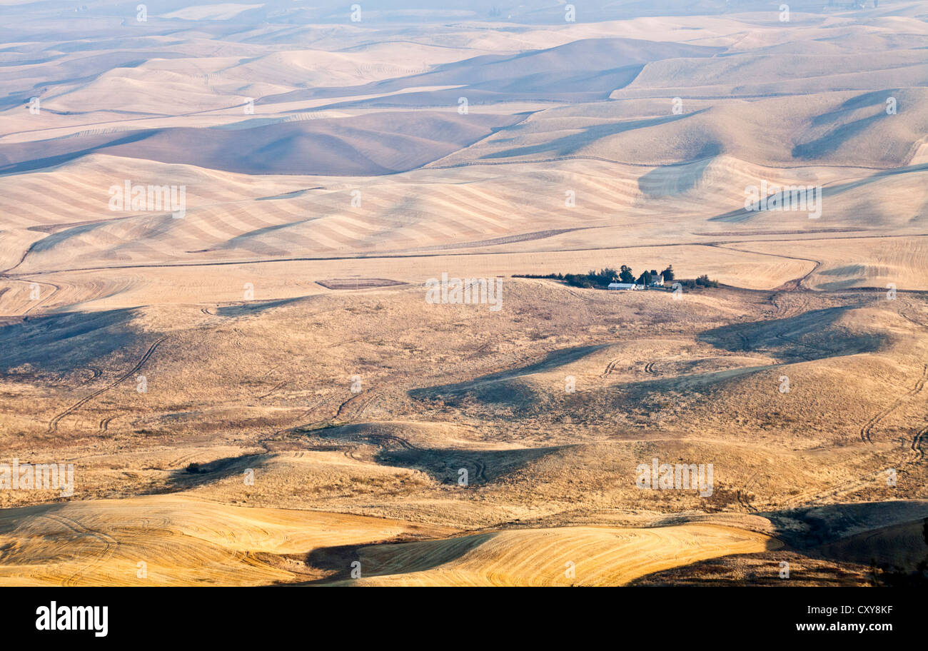 Dawn light across  the golden farm lands of Palouse County from Steptoe Butte Washington State at harvest time - Stock Image