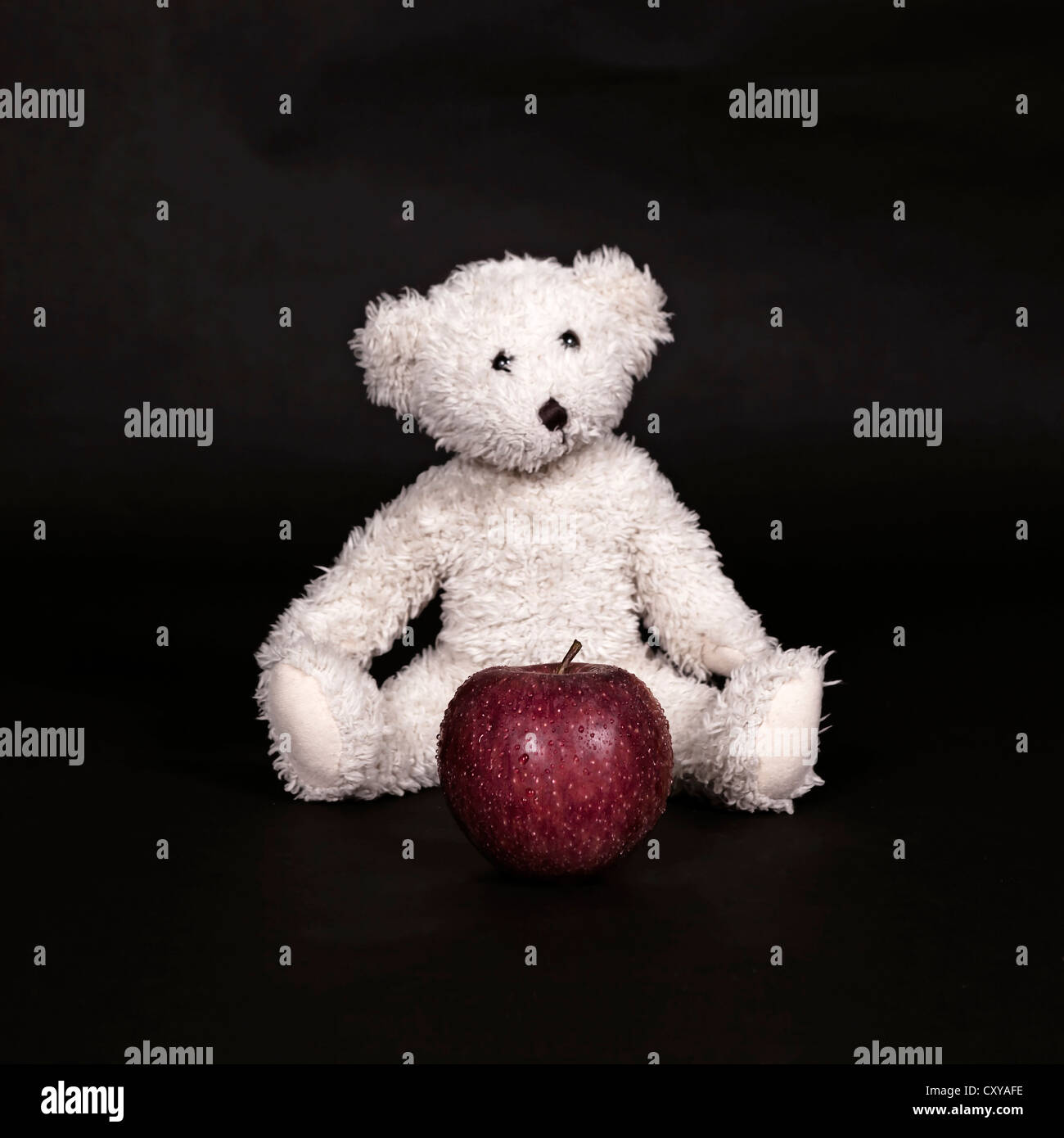 a white teddy bear and a red apple - Stock Image